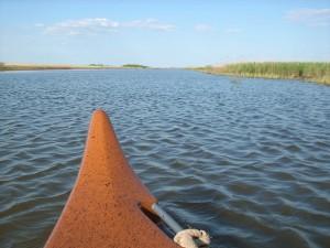 mit dem Kanu auf der Wiedau